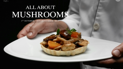 All about Mushrooms